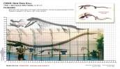 48th[1].Tylosaurus